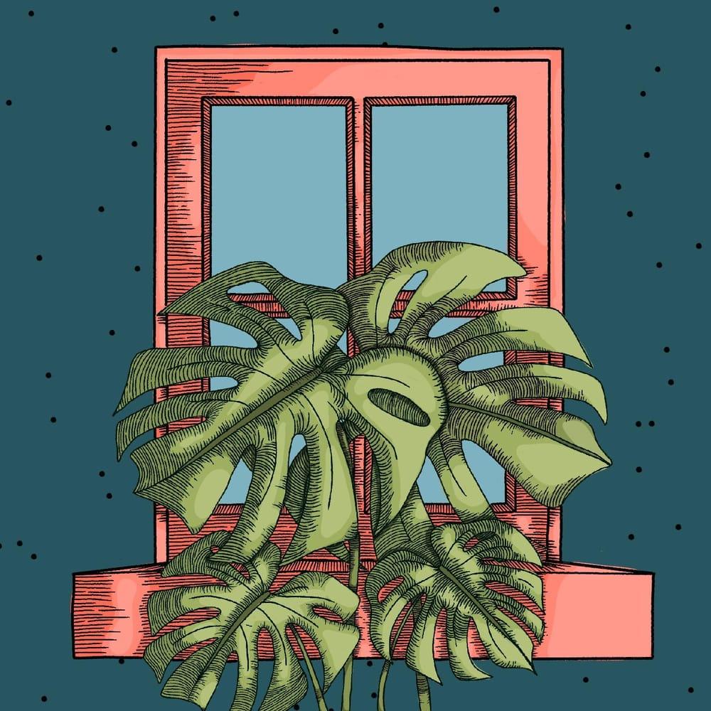 Plants - image 3 - student project