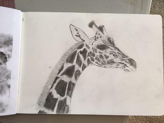 Giraffe - image 2 - student project