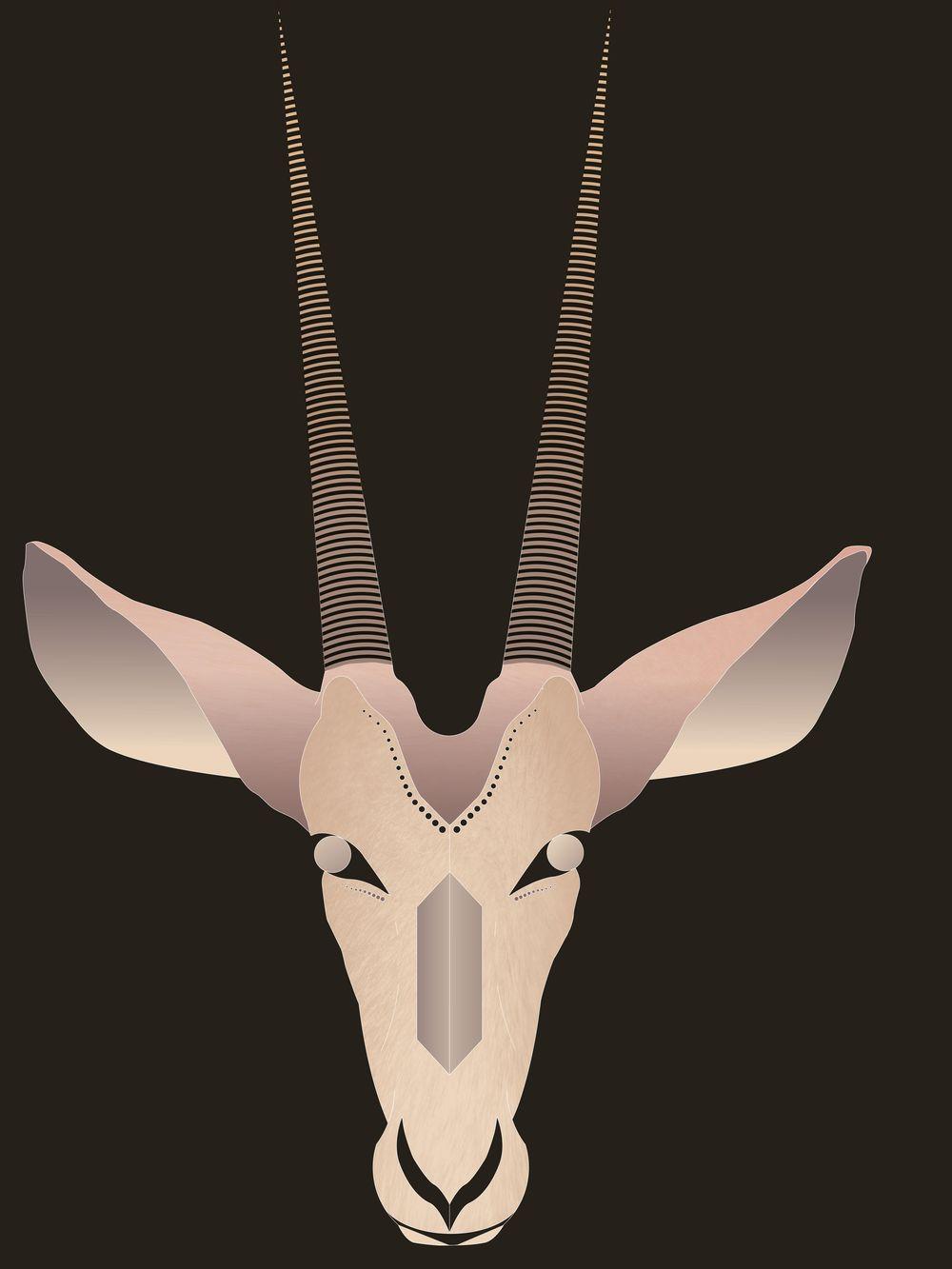 Arabian Oryx - image 1 - student project