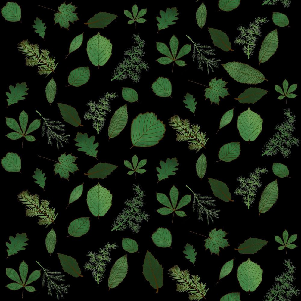 Leaf pattern - image 4 - student project