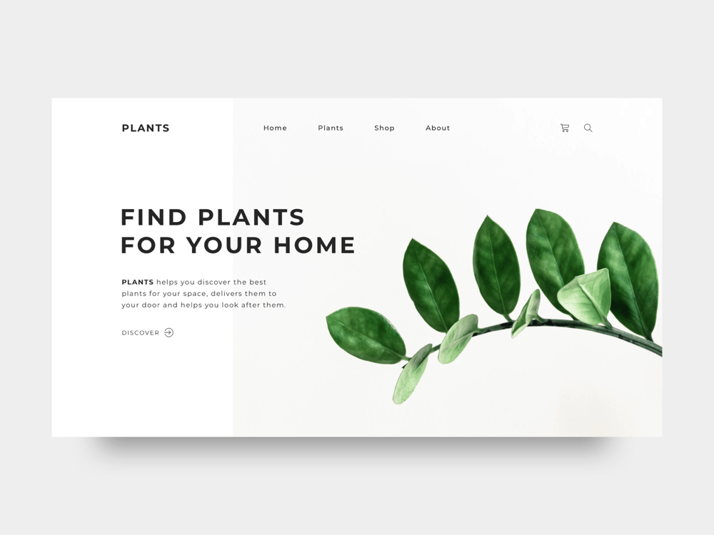 Homepage Plants - image 1 - student project
