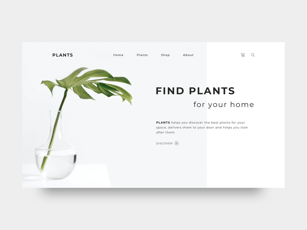 Homepage Plants - image 2 - student project