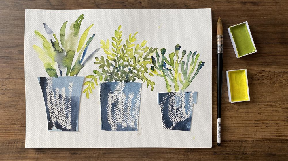 House Plants: Fern, succulent and potted palm - image 1 - student project