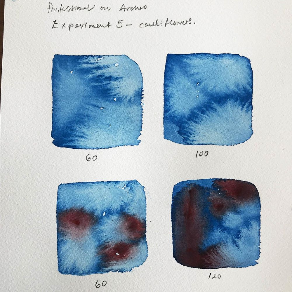 Timed Watercolour Experiments - image 3 - student project