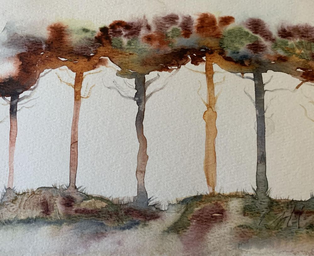 Trees - image 1 - student project