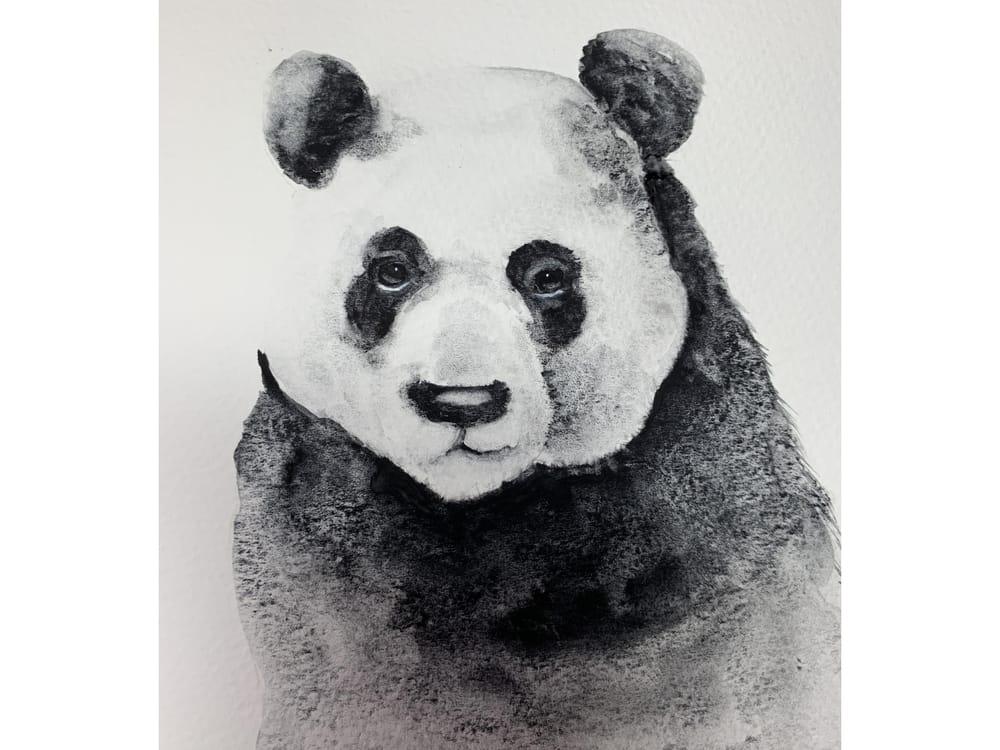 Miss Panda - image 1 - student project