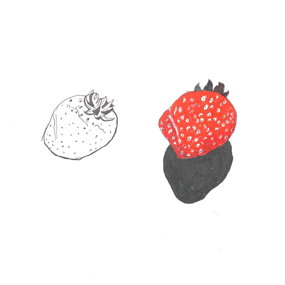 Daily Food Drawing Practice - image 7 - student project