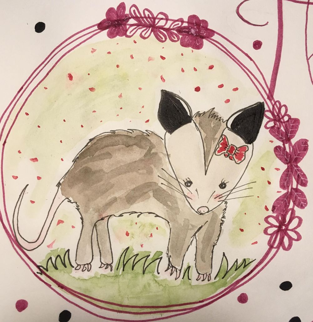 Cute opossum - image 1 - student project