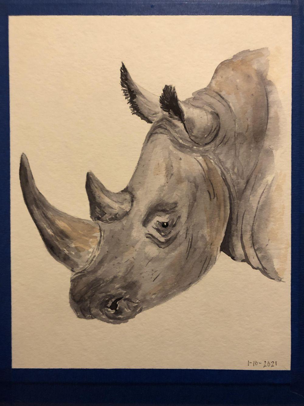 Rhino #1 - image 1 - student project