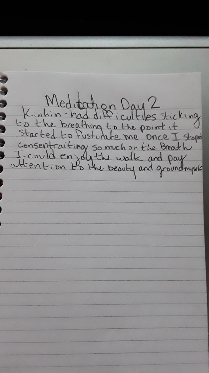 my 21 days of meditation - image 2 - student project