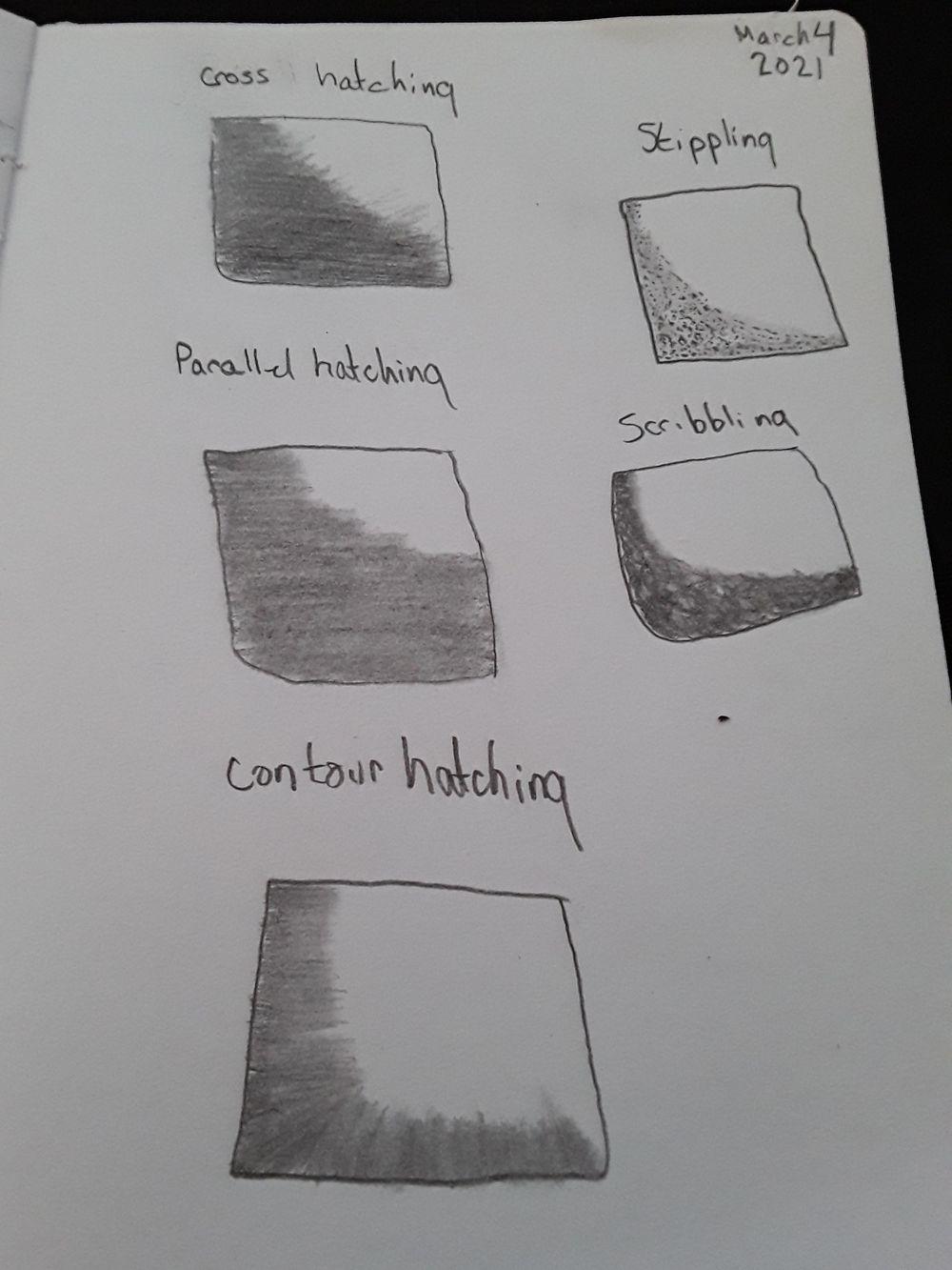 pencil drawing- basics - image 6 - student project