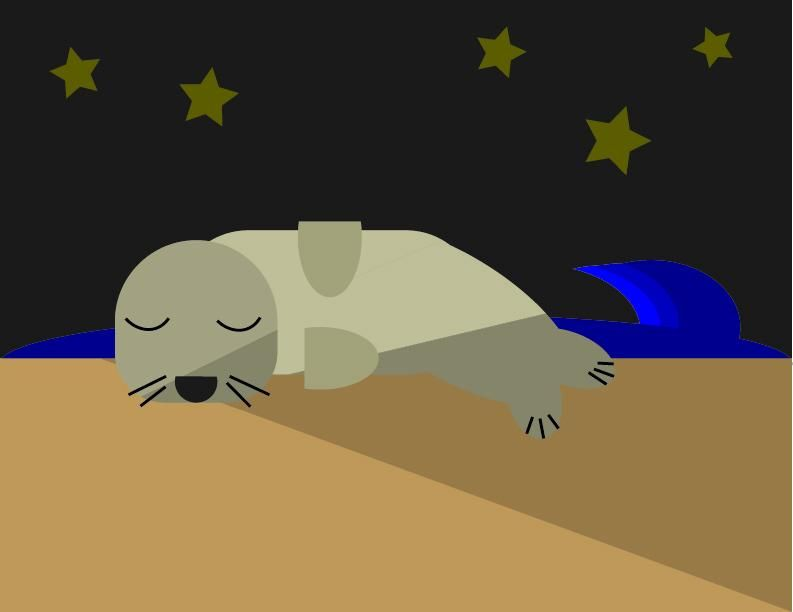 Sleeping Seal - image 1 - student project