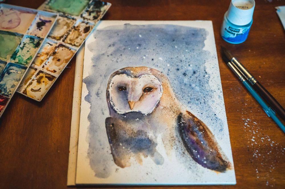 Barn Owl. A Free-Flow Watercolour Masterclass with Jane Davies - image 1 - student project