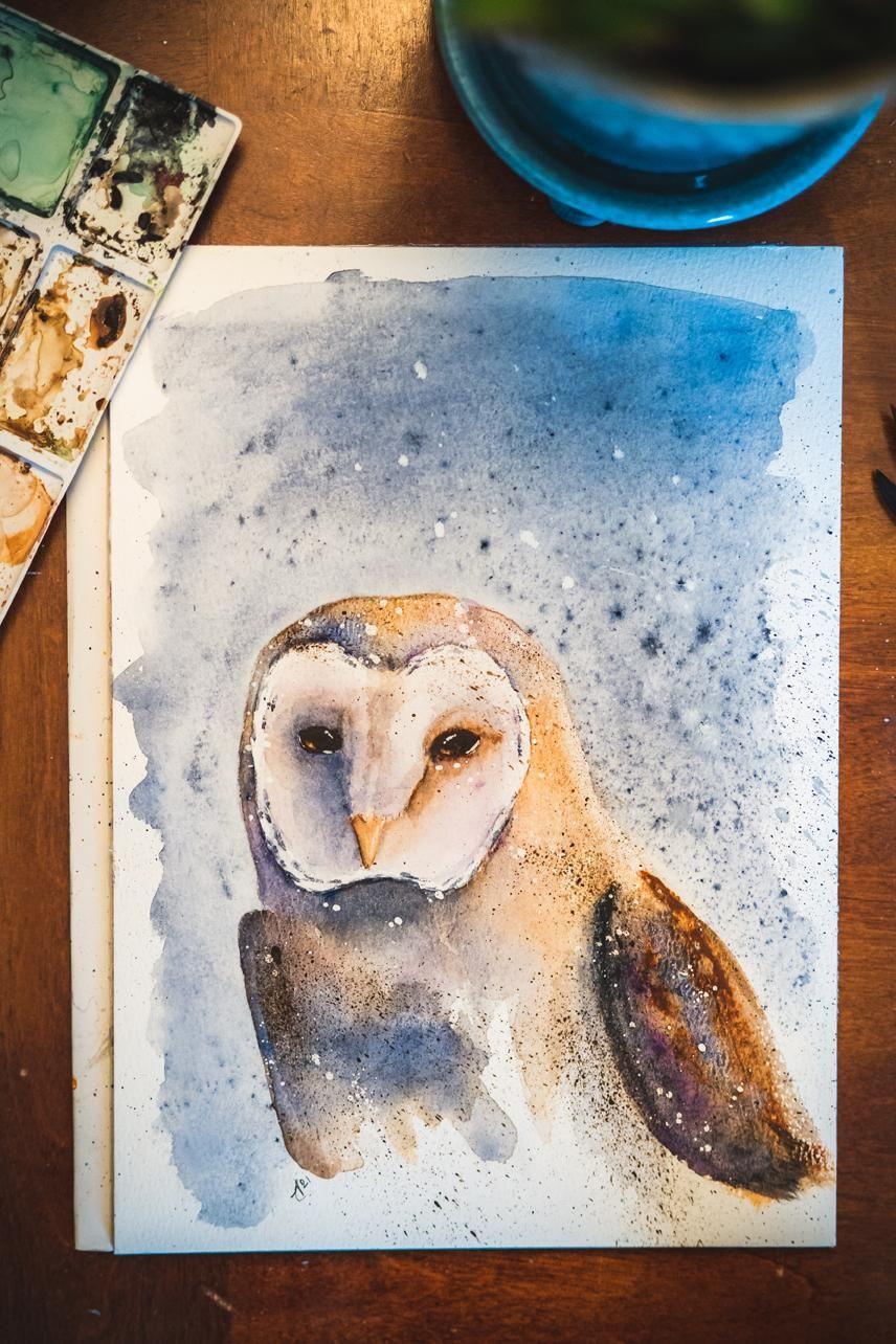 Barn Owl. A Free-Flow Watercolour Masterclass with Jane Davies - image 2 - student project