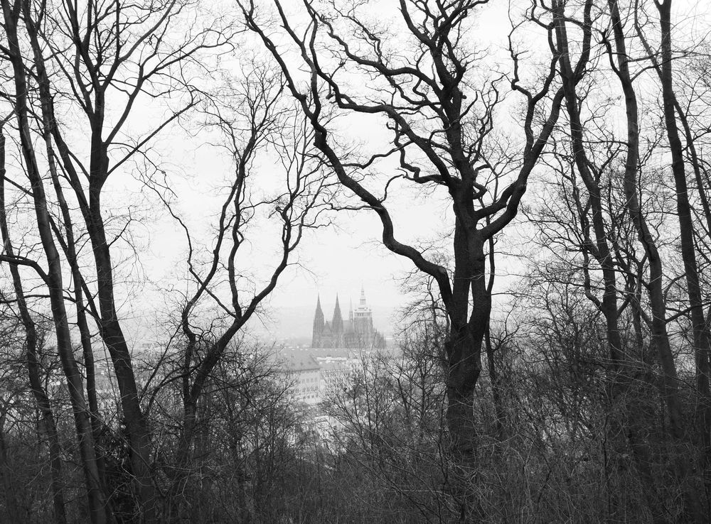 Wandering in Prague - image 5 - student project
