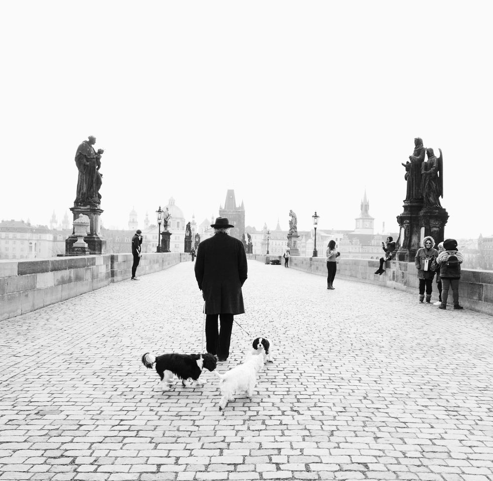 Wandering in Prague - image 4 - student project