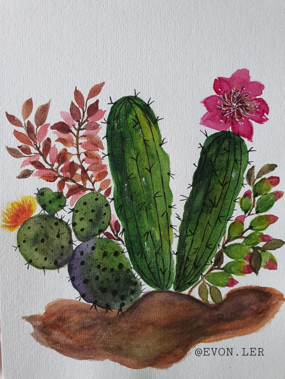 Watercolor Cacti - image 1 - student project