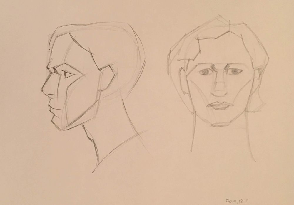 Begnner Figure Drawing Drawing the Head 1 - image 1 - student project
