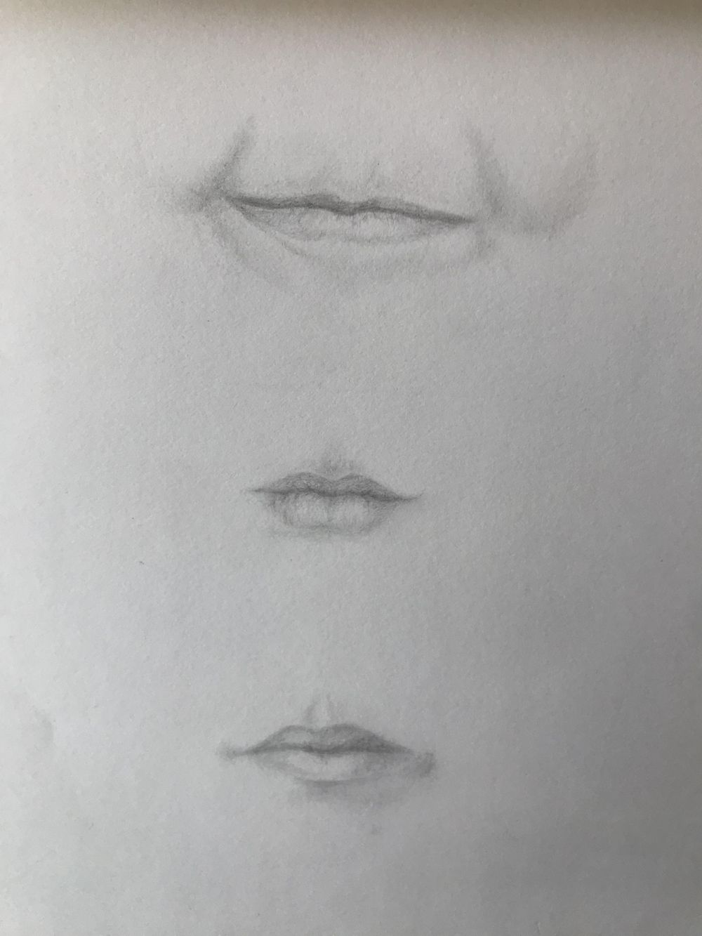 eyes, noses and lips - image 2 - student project