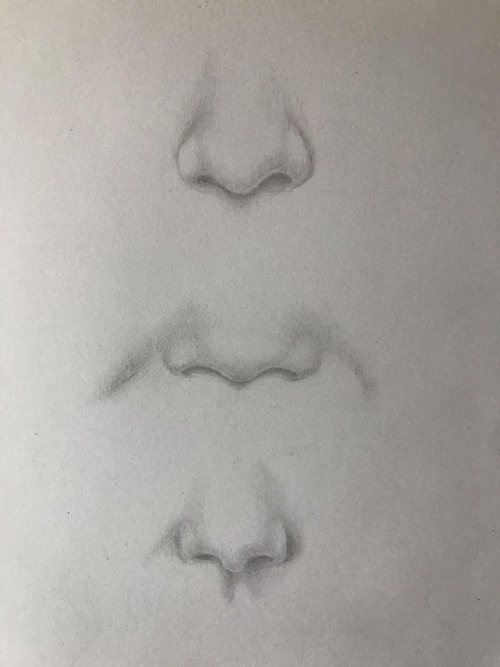 eyes, noses and lips - image 1 - student project