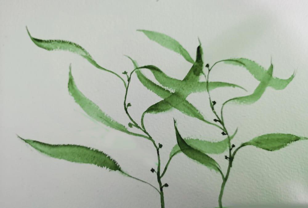 Botanical WaterColour - image 1 - student project