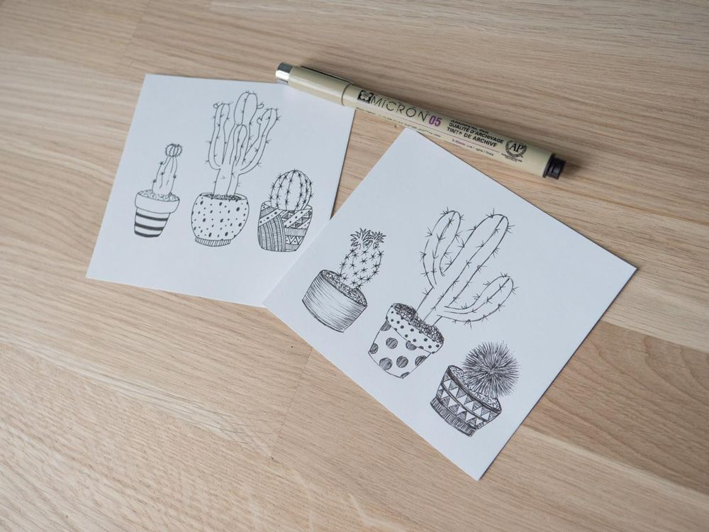 Cactus pen with watercolours - image 2 - student project