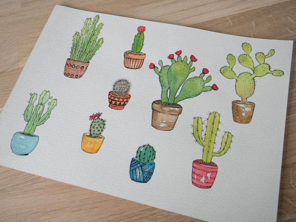 Cactus pen with watercolours - image 1 - student project
