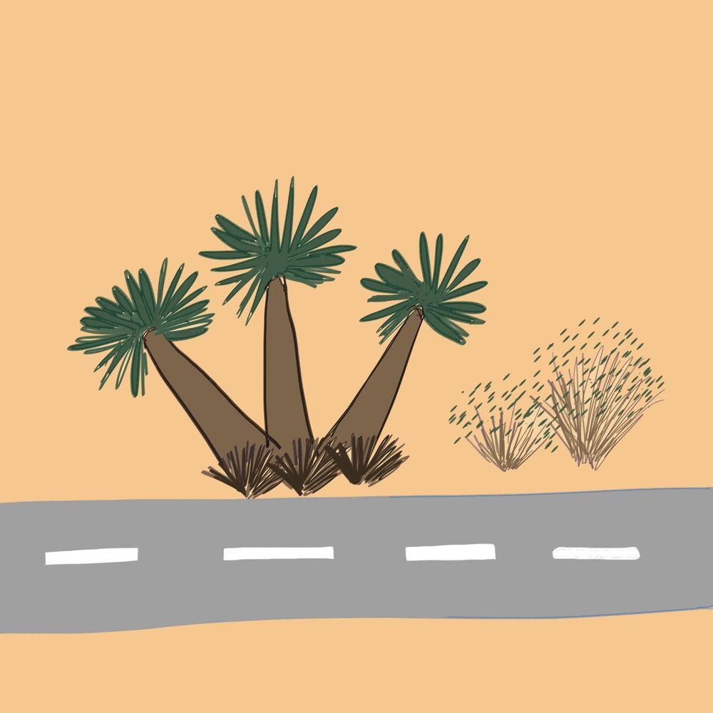 Driving to Las Vegas - image 4 - student project