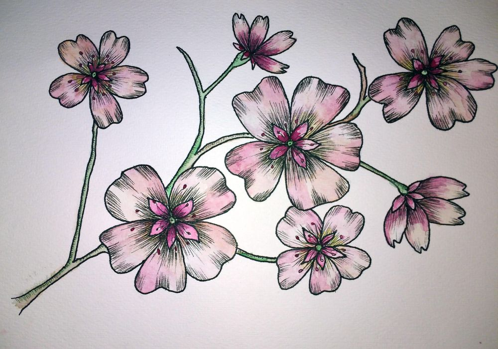 Ink blossoms - image 2 - student project