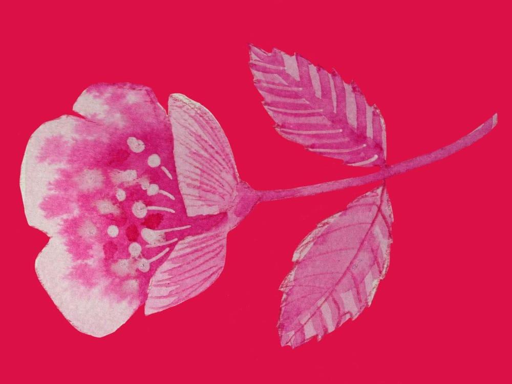 flower cutout practice - image 2 - student project