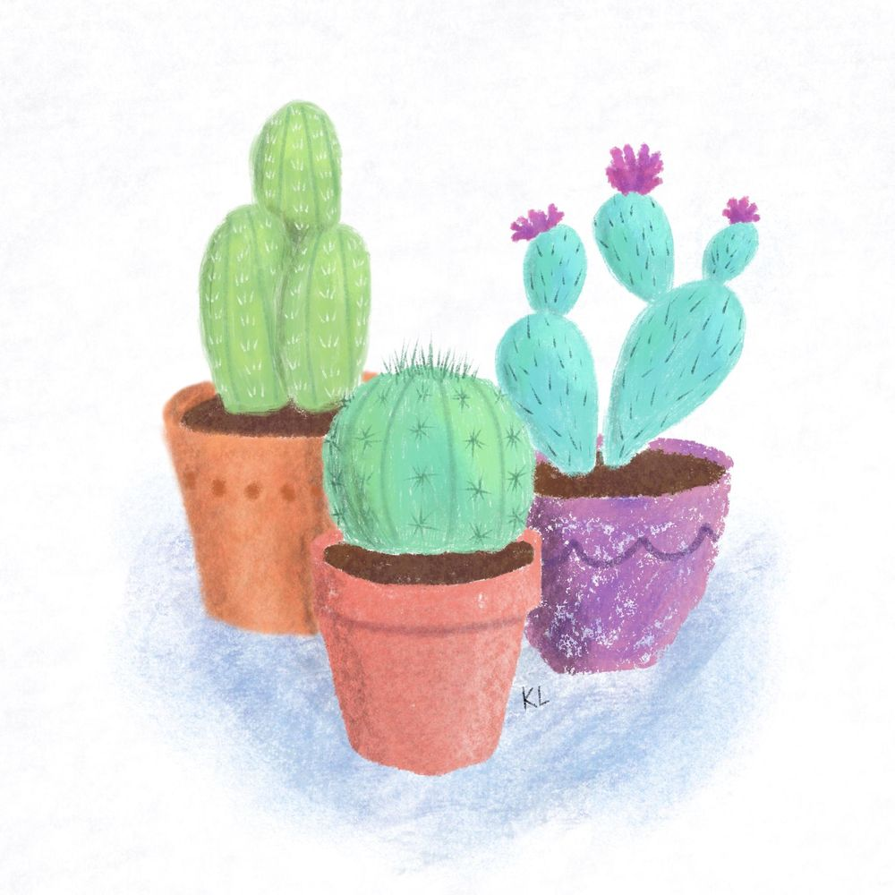 Cactus drawing - image 1 - student project