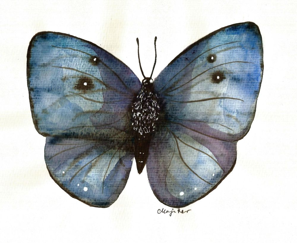 My butterflies :) - image 1 - student project