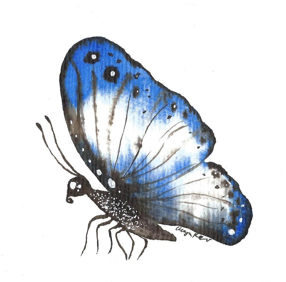 My butterflies :) - image 3 - student project