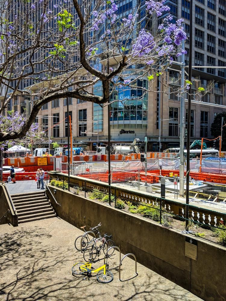 Saturday in Sydney - image 1 - student project
