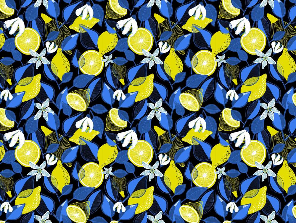 Lemons - image 4 - student project