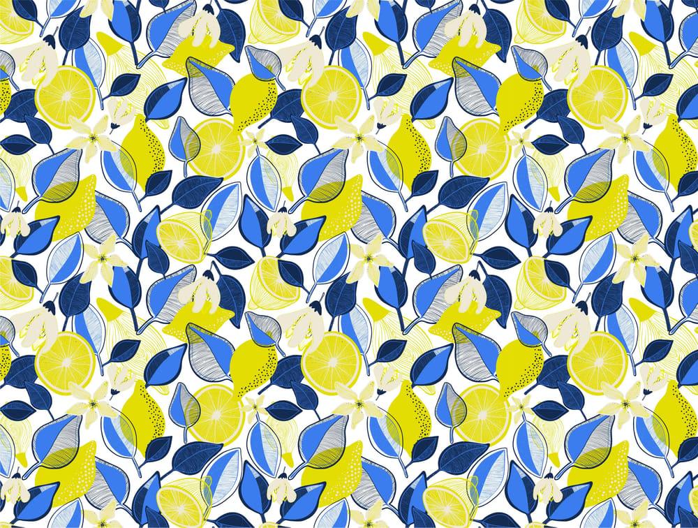 Lemons - image 2 - student project