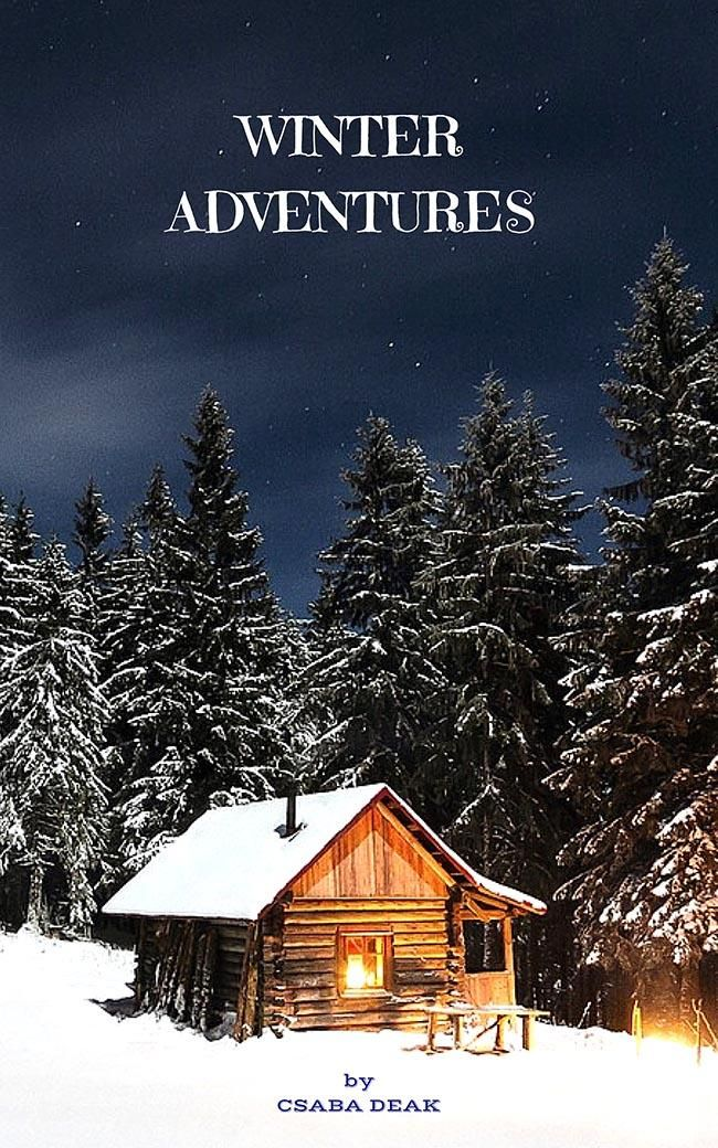 Winter adventures - image 1 - student project