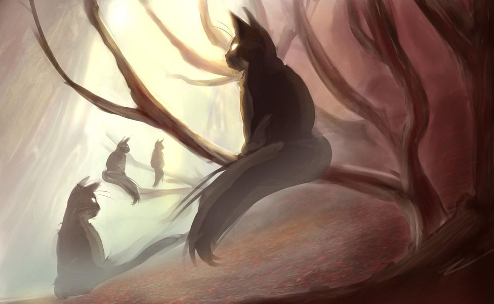 Enchanted Cat Forest - image 2 - student project