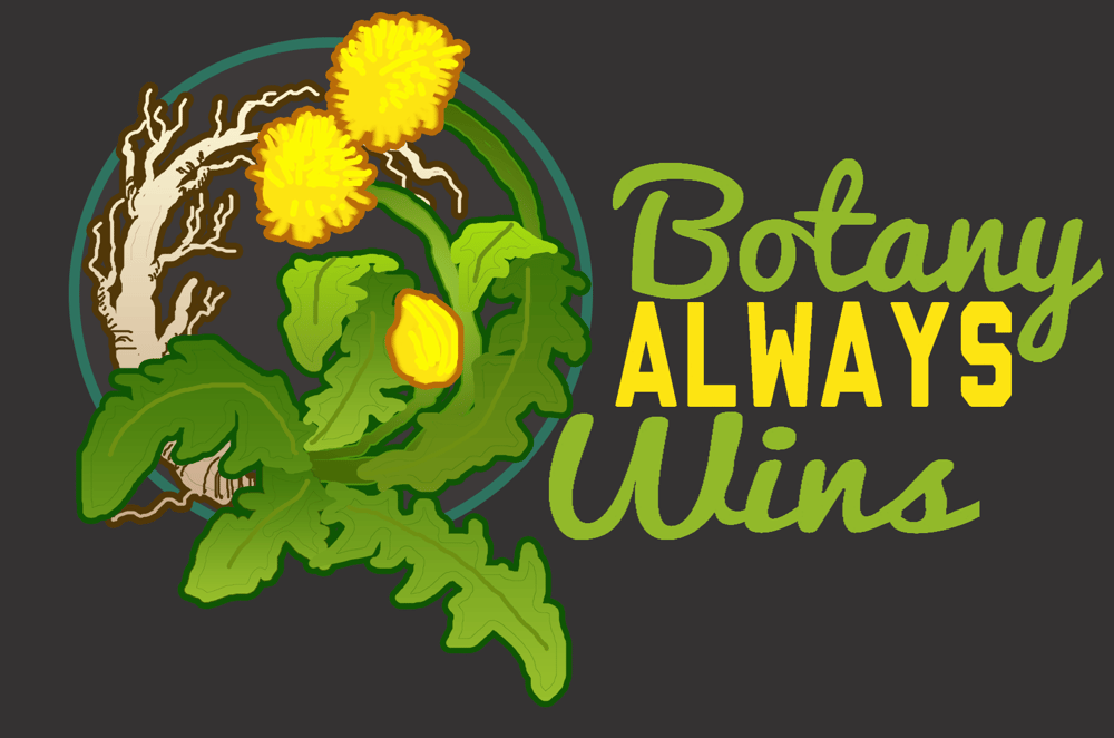 Botany Always Wins - image 1 - student project