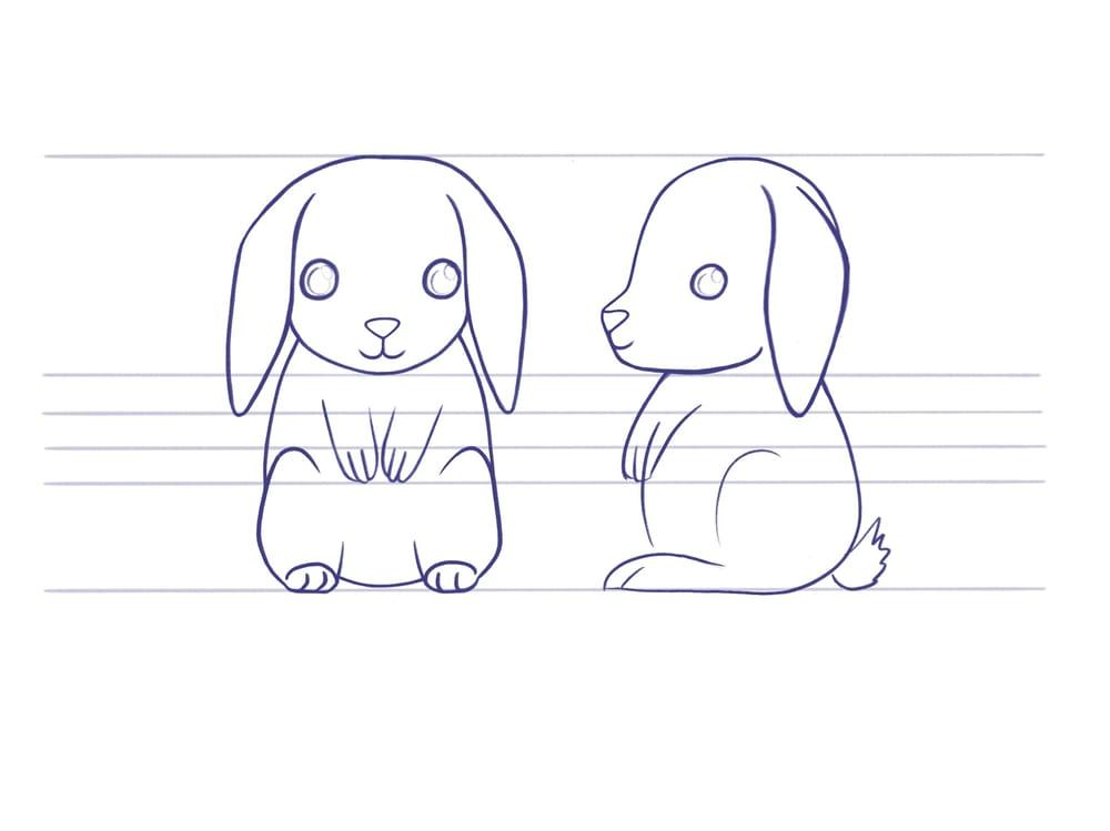 Kees het konijn - image 1 - student project