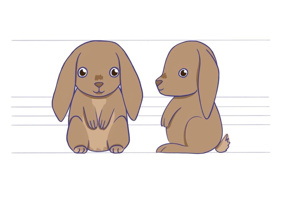 Kees het konijn - image 2 - student project