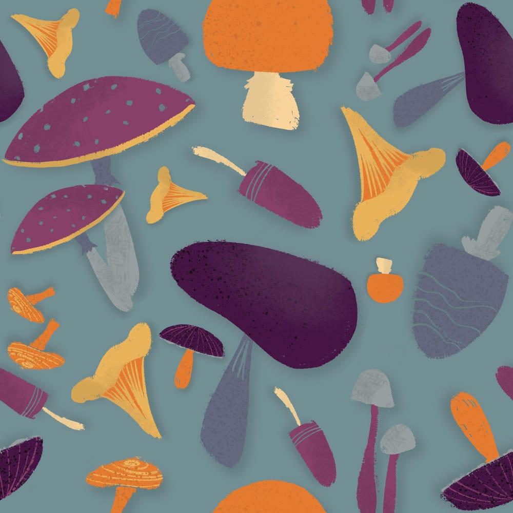 Magic mushrooms - image 2 - student project