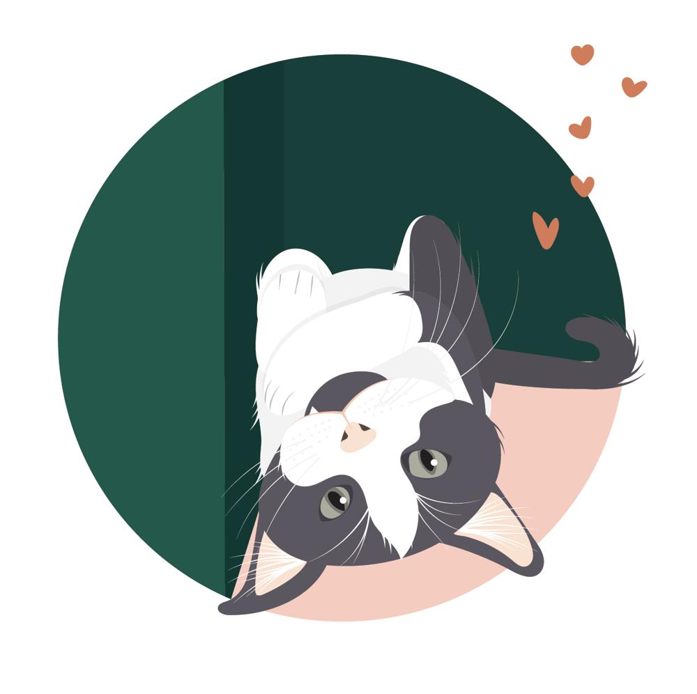 Cat Illustration - image 1 - student project
