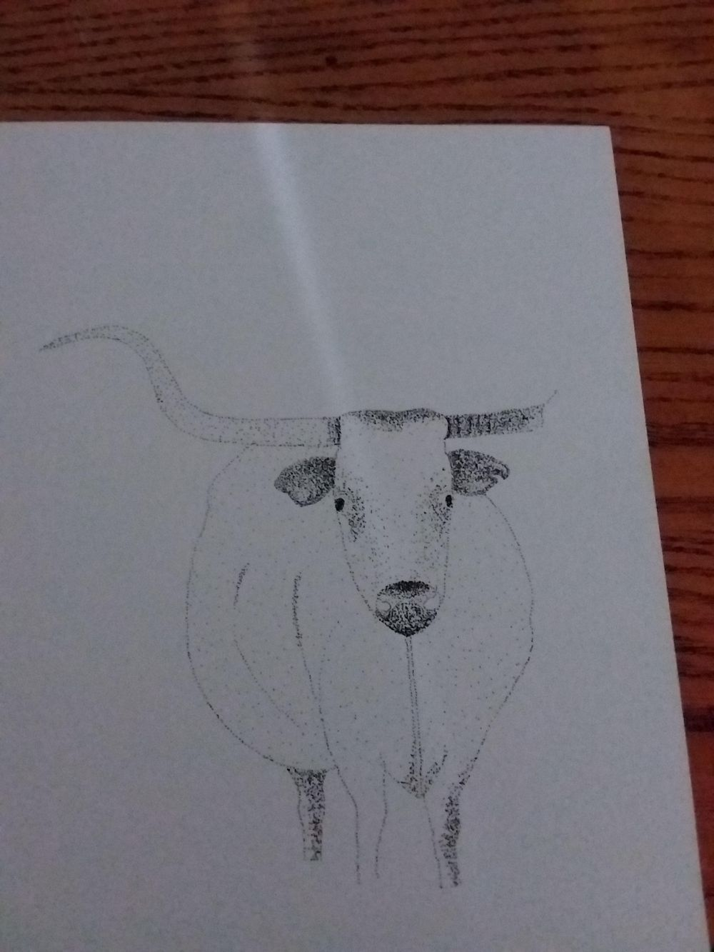Beginning of a longhorn - image 2 - student project