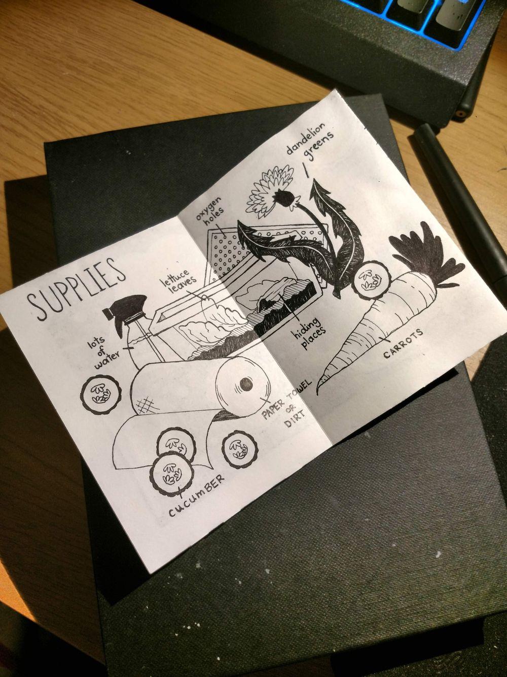 You've Got Snail - image 2 - student project