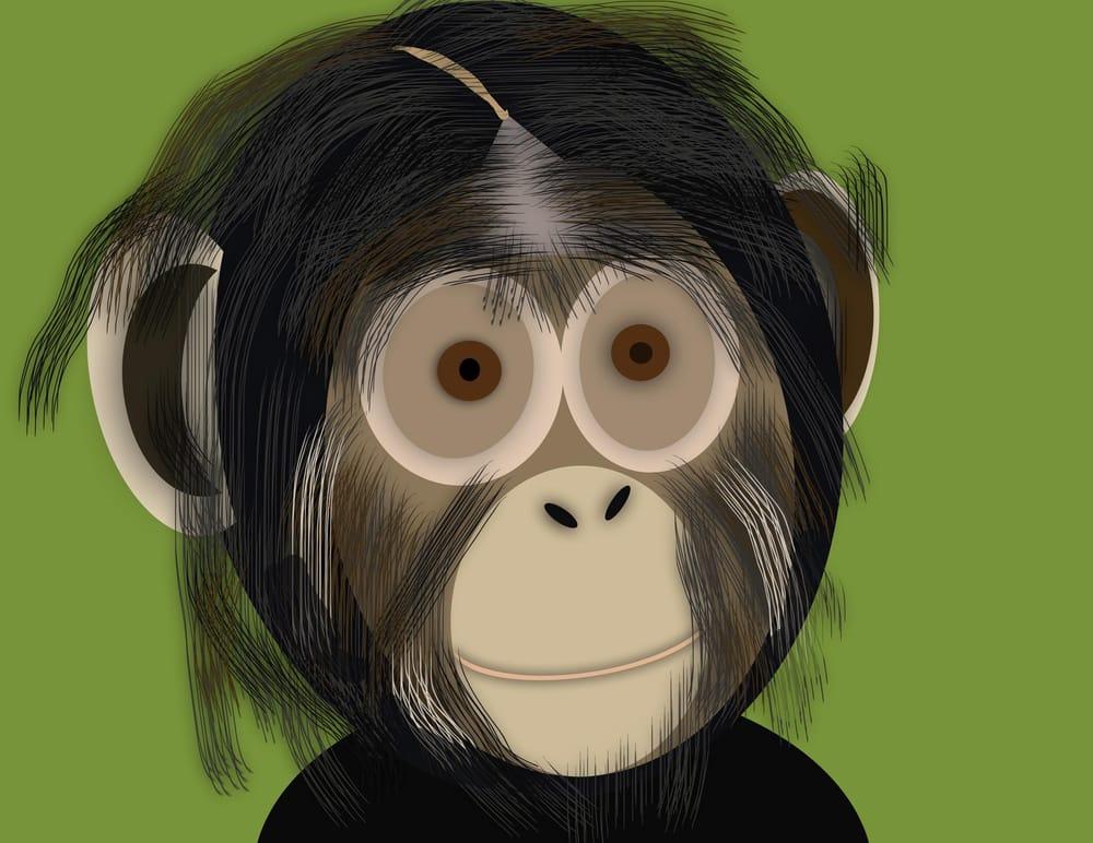 Chimp - image 1 - student project