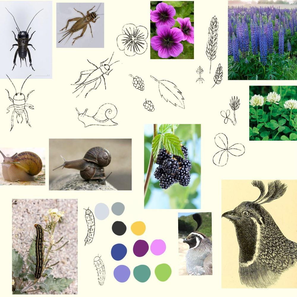 Inspiration Board - image 1 - student project