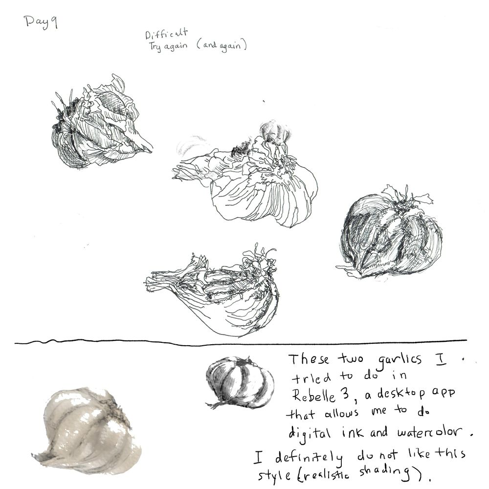 gail's 14 day challenge - image 9 - student project
