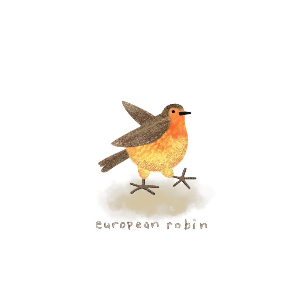 30 days of birds - image 6 - student project