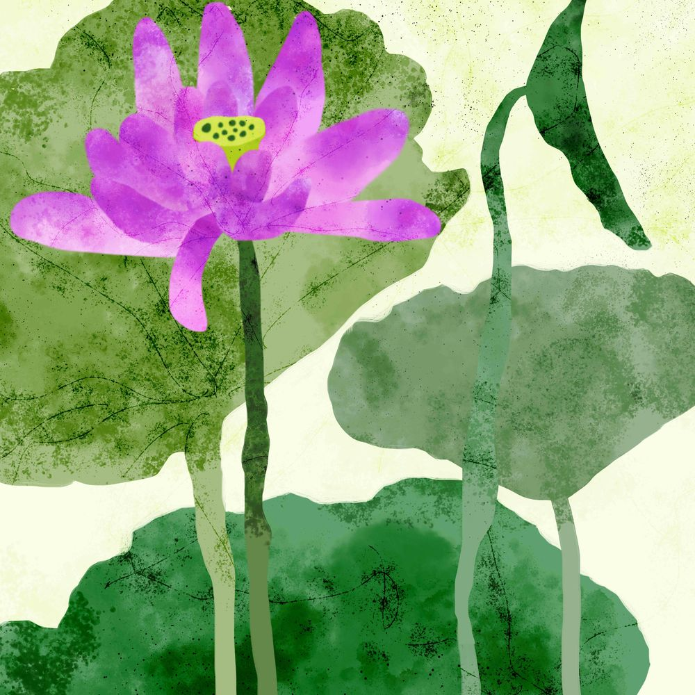 Lotus Flower - image 3 - student project
